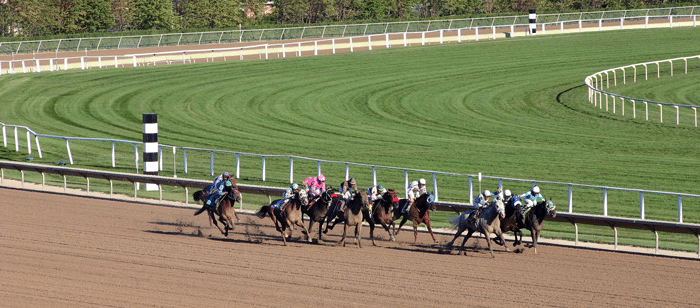 apuestas_caballos_carreras