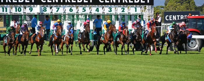 apuestas_caballos_carreras_2