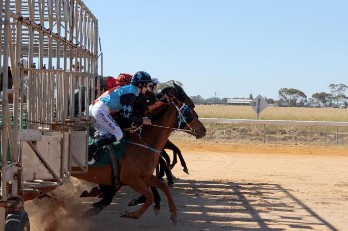 apuestas_caballos_carreras_4