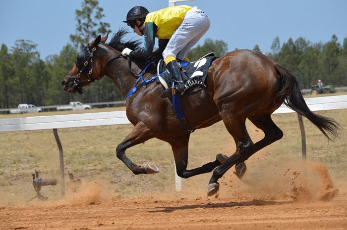 apuestas_caballos_carreras_9