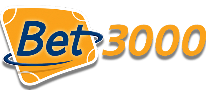 Bett 3000