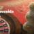 apuestasonline.net-leo-vegas-bono-bienvenida-casino-en-vivo (1)